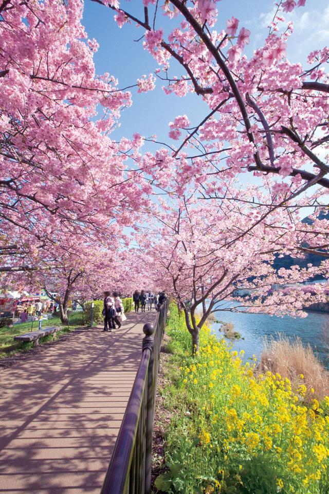 สถานที่เที่ยวญี่ปุ่น